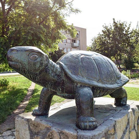 Tortoise Fountain Budapest