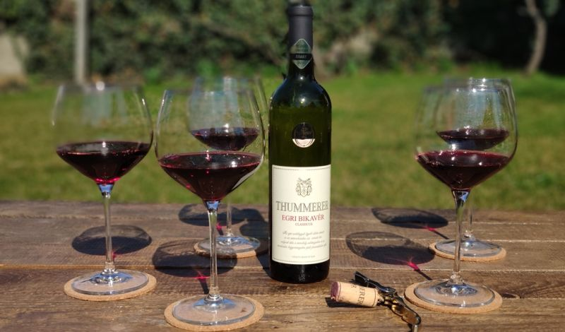 Hungarian Bull's blood wine